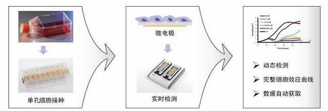 溶液的配制方法-mtt法操作步骤